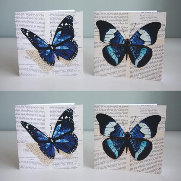 vierkante vlinder kaart